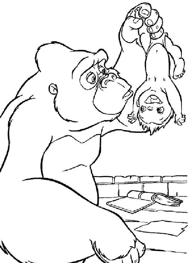 Раскраска Горилла нашла тразана Скачать ,горилла, ребенок,.  Распечатать