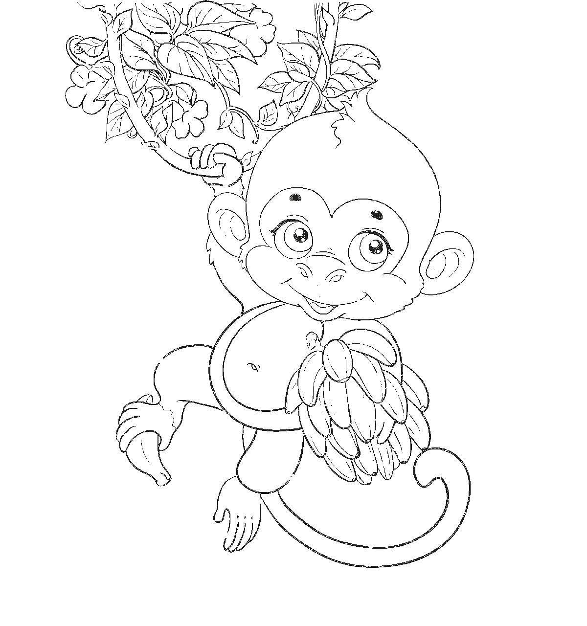 Раскраска обезьяна Скачать ,принцессы, аврора,.  Распечатать