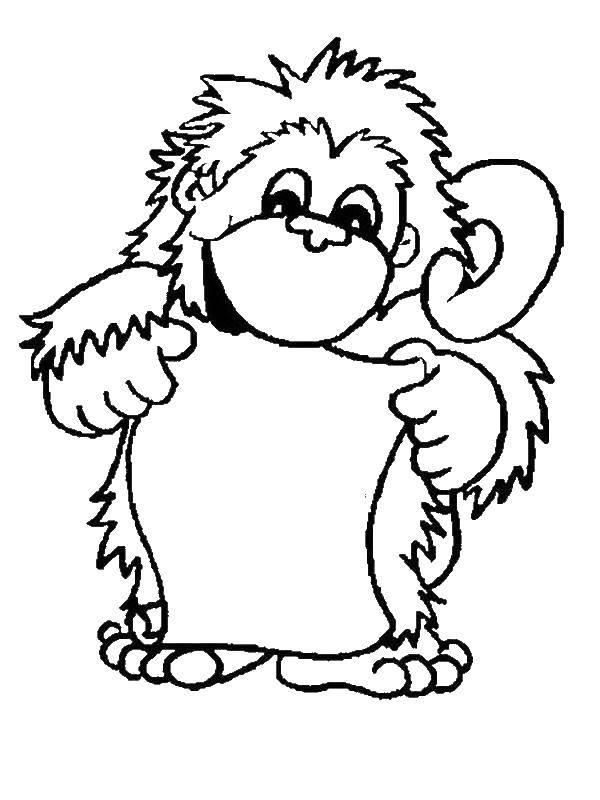 Раскраска обезьяна Скачать единорог, крылья, корона.  Распечатать ,мой маленький пони,