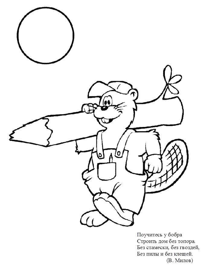 Раскраска Бобр с деревом Скачать бобр.  Распечатать ,Животные,
