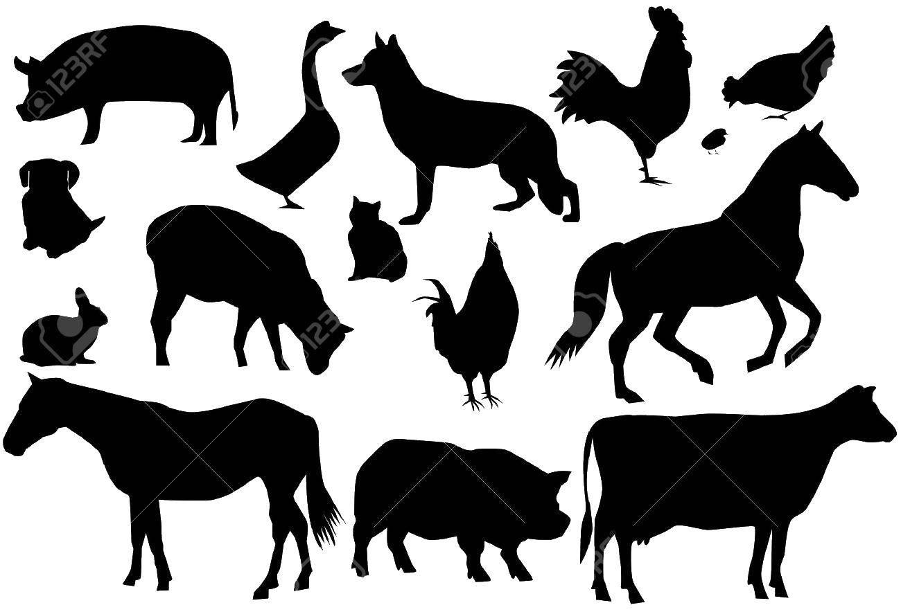 Раскраска Силуэты животных Скачать Контур.  Распечатать ,раскраски,