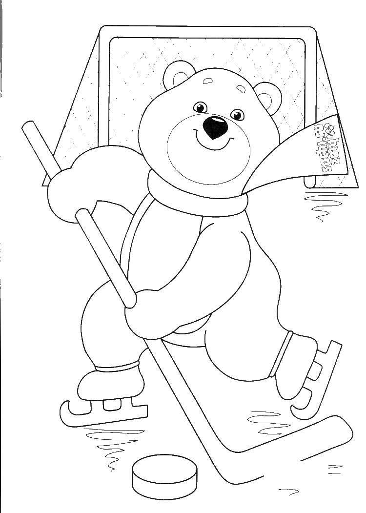 Раскраска Медведь хоккейст Скачать олимпийские игры, медведь, хоккей.  Распечатать ,олимпийские игры,