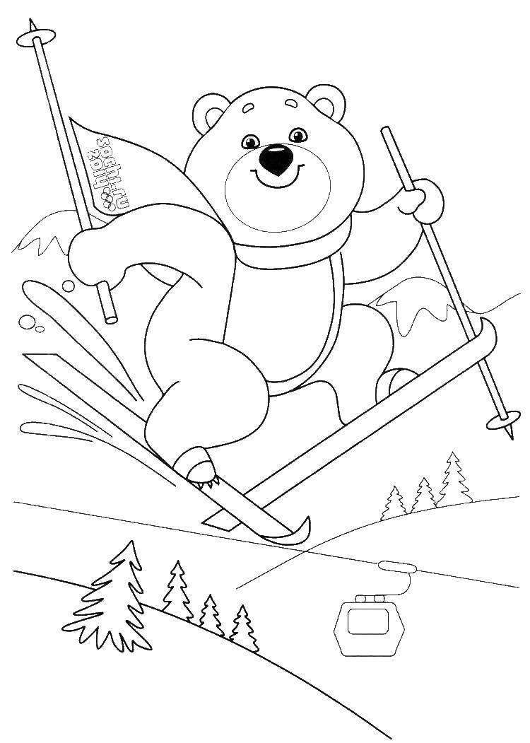 Раскраска Медведь катается на лыжах Скачать олимпийские игры, медведь, лыжи.  Распечатать ,олимпийские игры,