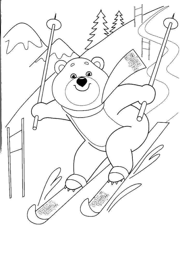 Раскраска Олимпийский мишка Скачать Олимпиада.  Распечатать ,олимпийские игры,