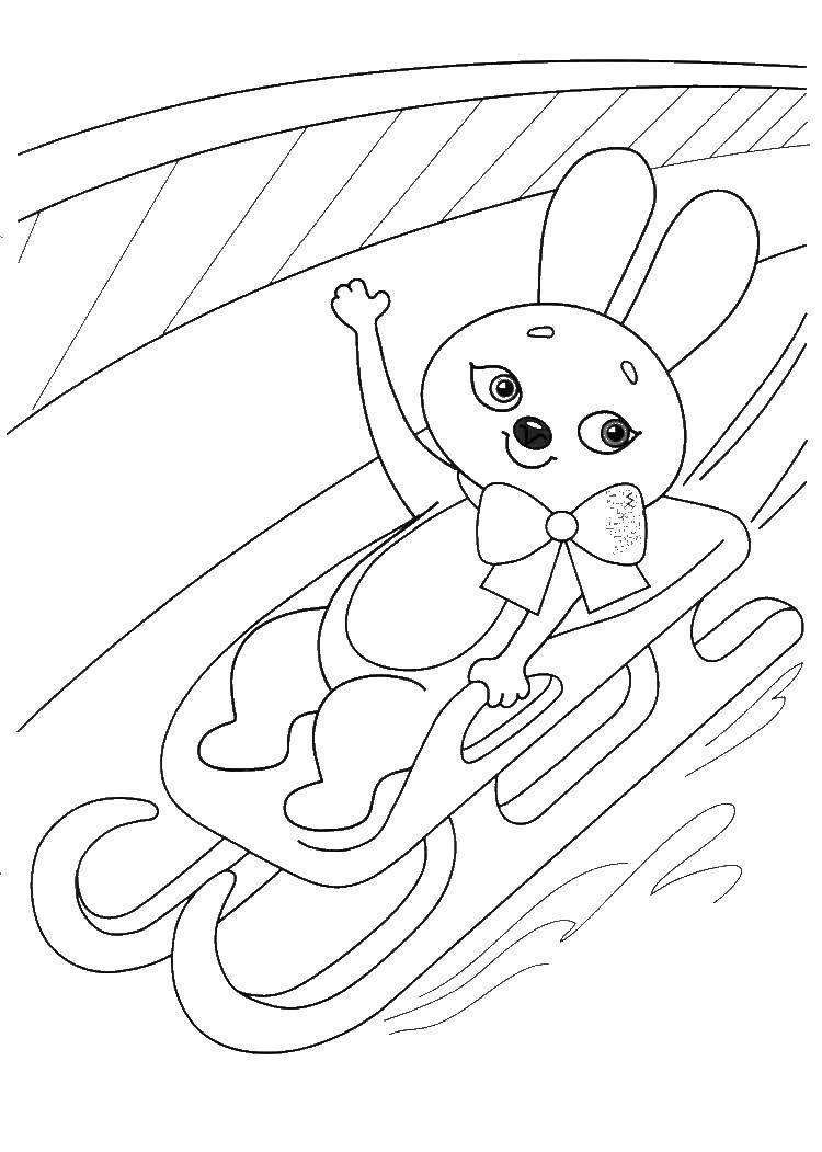 Раскраска Заяц катается на санках Скачать олимпийские игры, сочи, заяц, санки.  Распечатать ,олимпийские игры,
