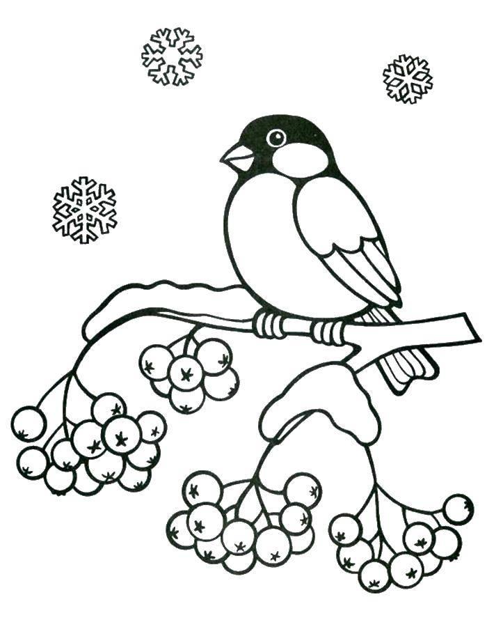 Раскраска птицы Скачать майнкрафт, .  Распечатать ,майнкрафт,