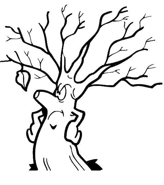 Раскраска дерево Скачать африка, континент, звери.  Распечатать ,африка,