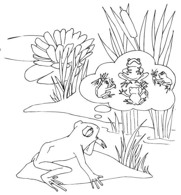 Раскраска Лягушонок. Скачать Рептилия, лягушка.  Распечатать ,лягушки,