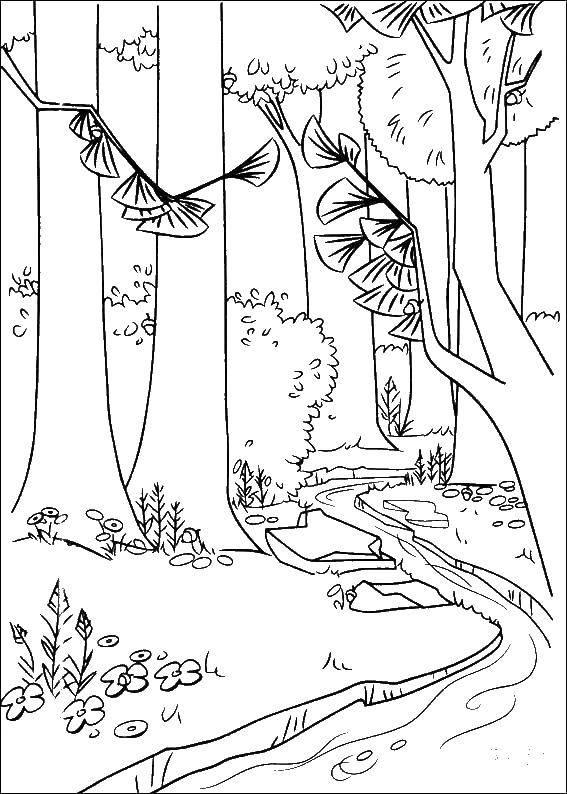 Раскраска ручей Скачать ,ручей, лес, вода,.  Распечатать