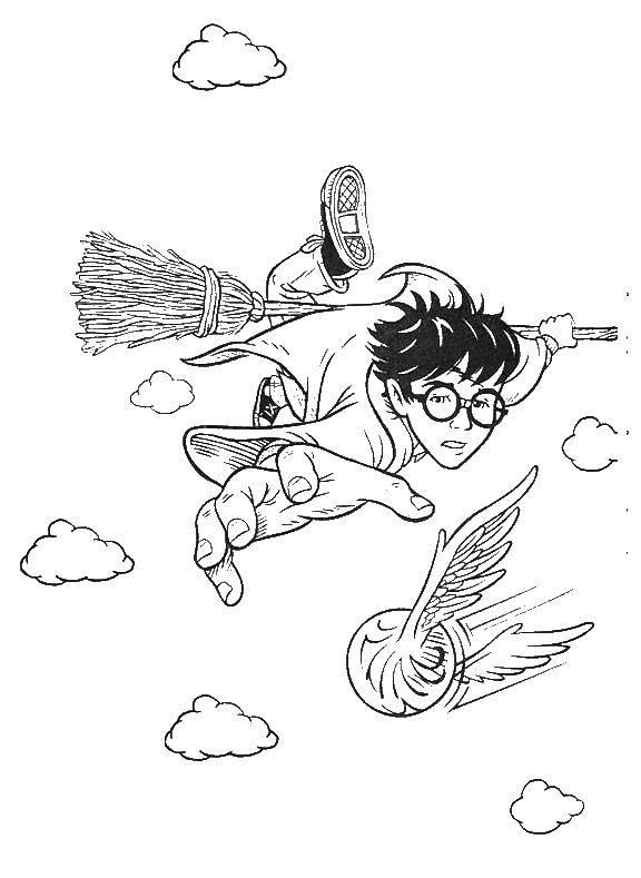 Раскраска Гарри поттер играет в квиддич Скачать фильмы, Гарри Поттер, волшебство, квиддич.  Распечатать ,гарри поттер,