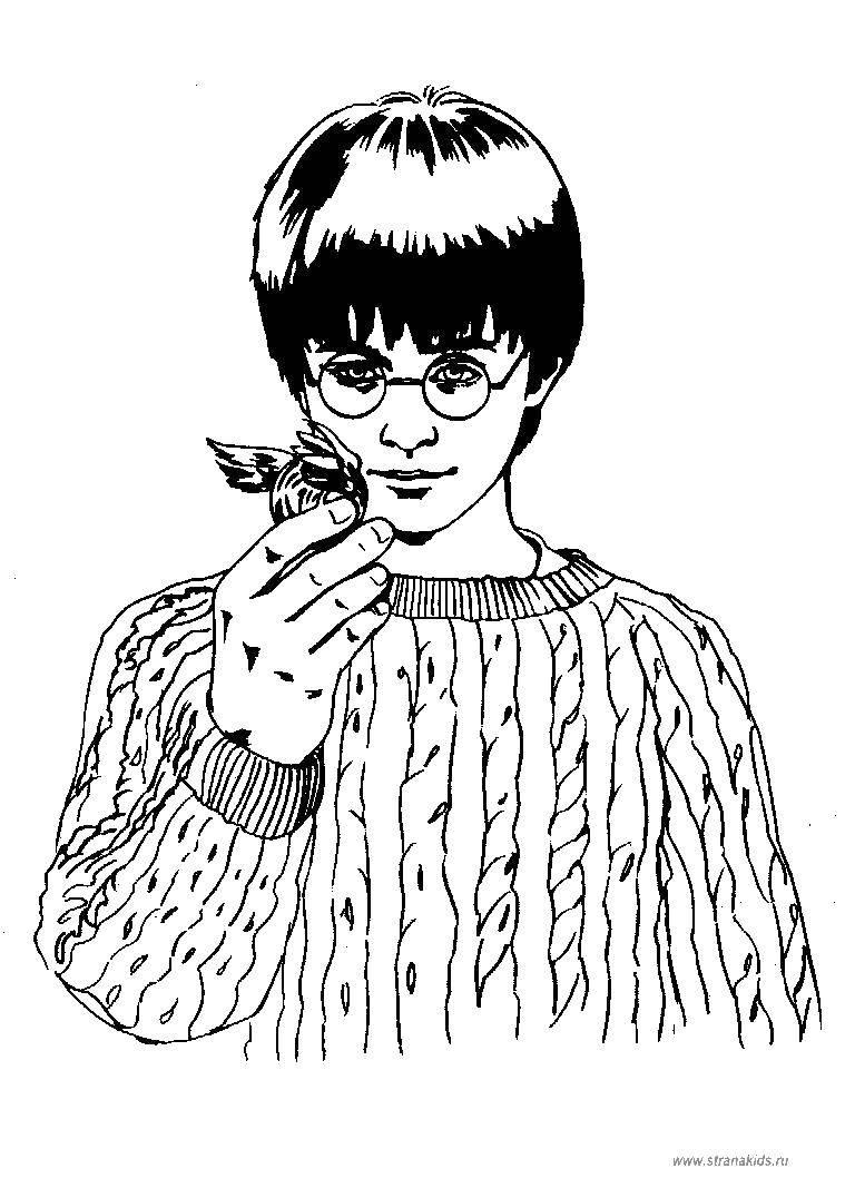 Раскраска Гарри поттер с шариком квидича Скачать Гарри Поттер, мультфильм.  Распечатать ,гарри поттер,