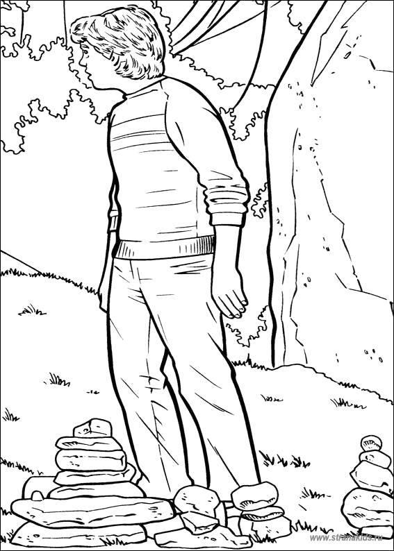 Раскраска Гарри Поттер Скачать Контур, бабочка.  Распечатать ,контуры для вырезания бабочек,