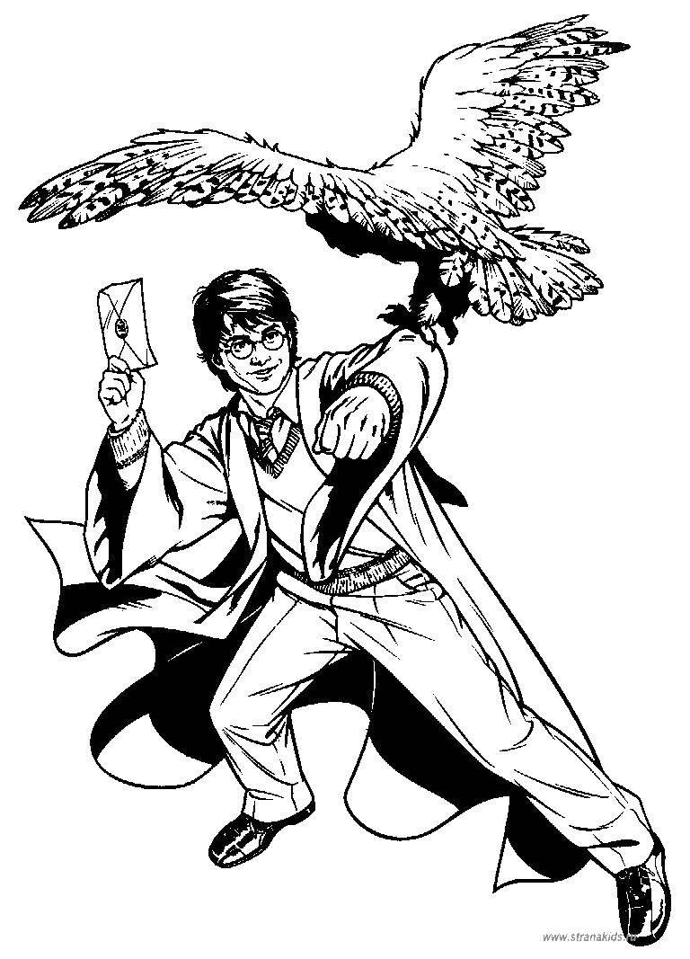 Раскраска Гарри поттер и сова Скачать Гарри Поттер, мультфильм.  Распечатать ,гарри поттер,