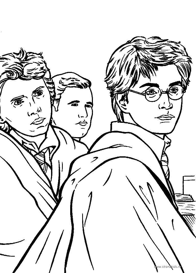 Раскраска Герои гарри поттера Скачать фильмы, Гарри Поттер, волшебство, герои.  Распечатать ,гарри поттер,