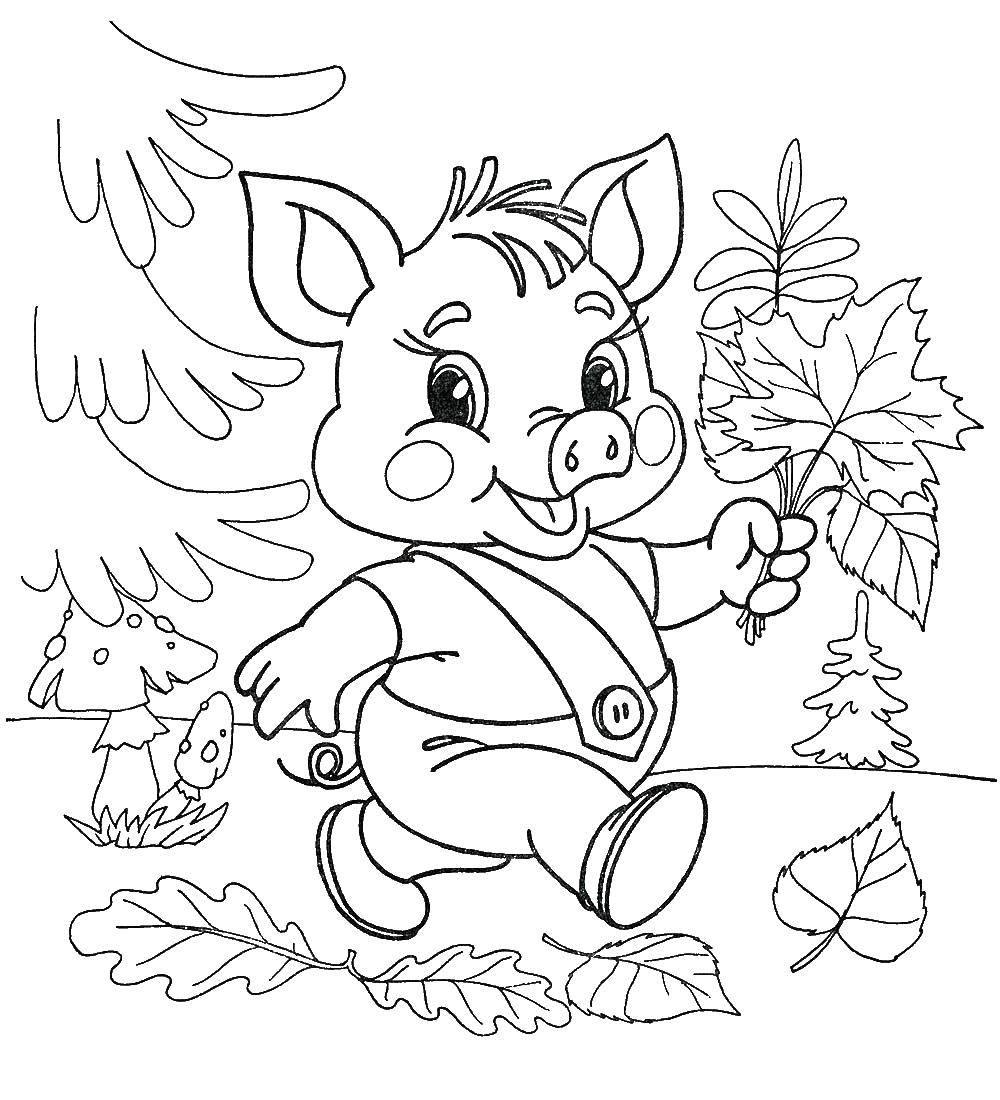 Раскраска Поросенок собирает листья Скачать поросенок, волк.  Распечатать ,Животные,