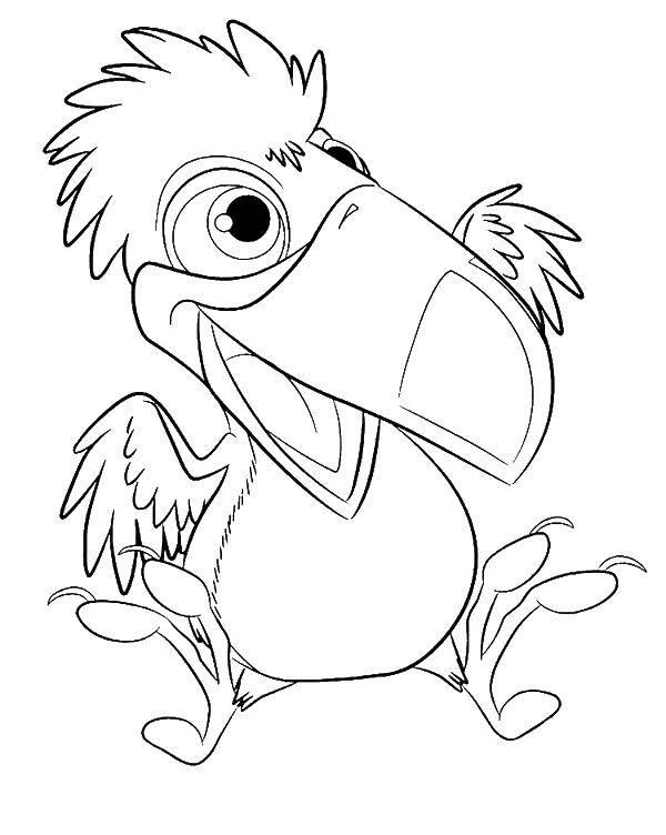 Раскраска птицы Скачать ,мультики , Октонавты,.  Распечатать