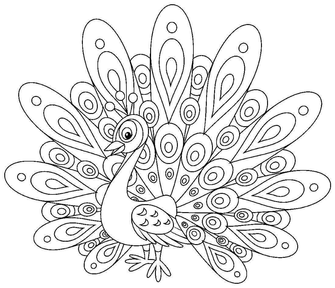 Раскраска Павлин с огромным хвостом Скачать Птицы, павлин.  Распечатать ,павлин,