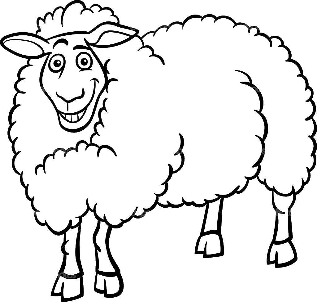 Раскраска Контур овечки для вырезания Скачать животные, змея, ужик, уж.  Распечатать ,Животные,