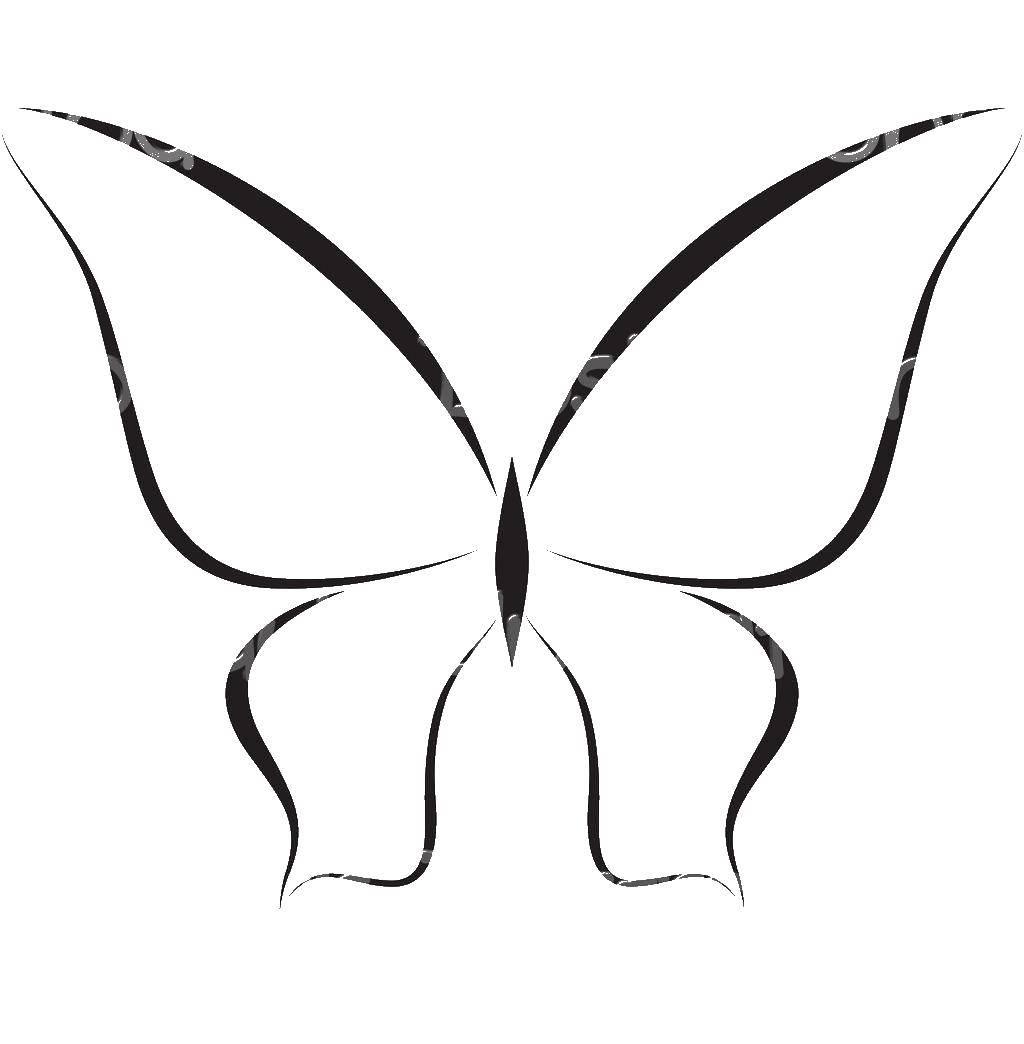 Раскраска Контур бабочки Скачать Контур, бабочка.  Распечатать ,контуры бабочек для вырезания,