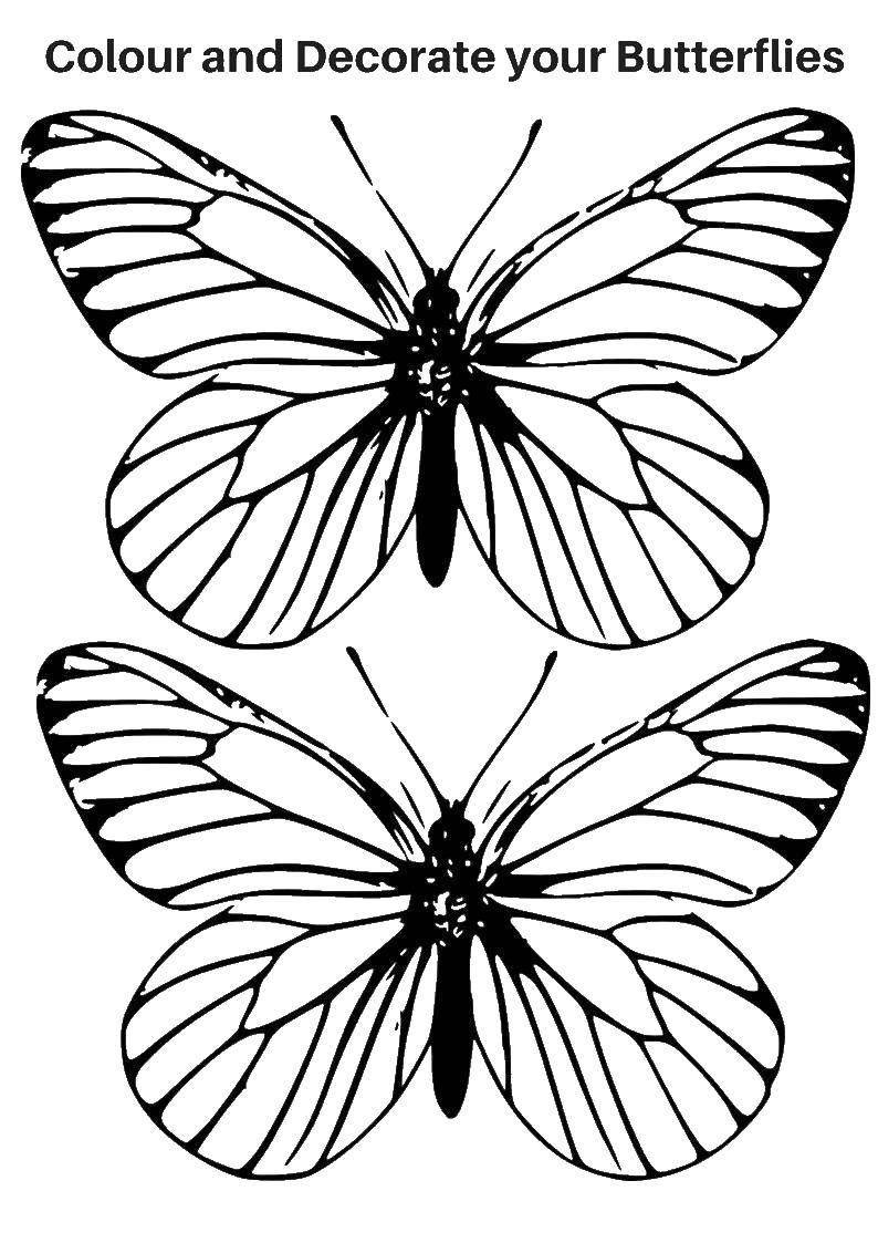 Раскраска бабочки Скачать контур, ладони, пальцы.  Распечатать ,Контур руки и ладошки для вырезания,