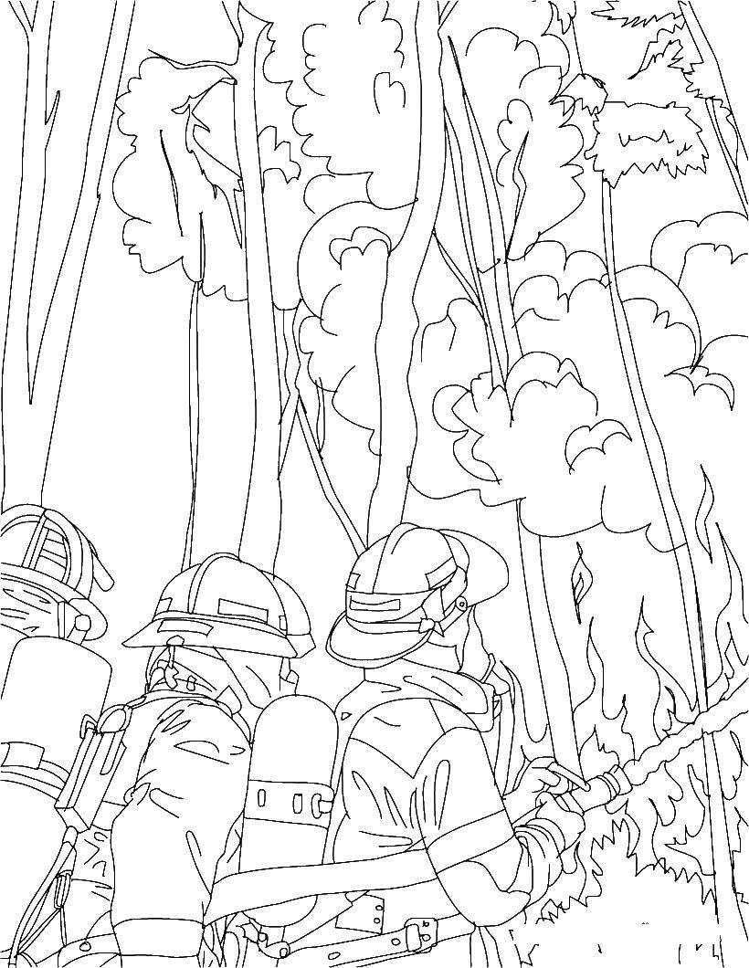 Раскраска Пожарные тушат огонь в лесу Скачать Пожар, огонь.  Распечатать ,Огонь,