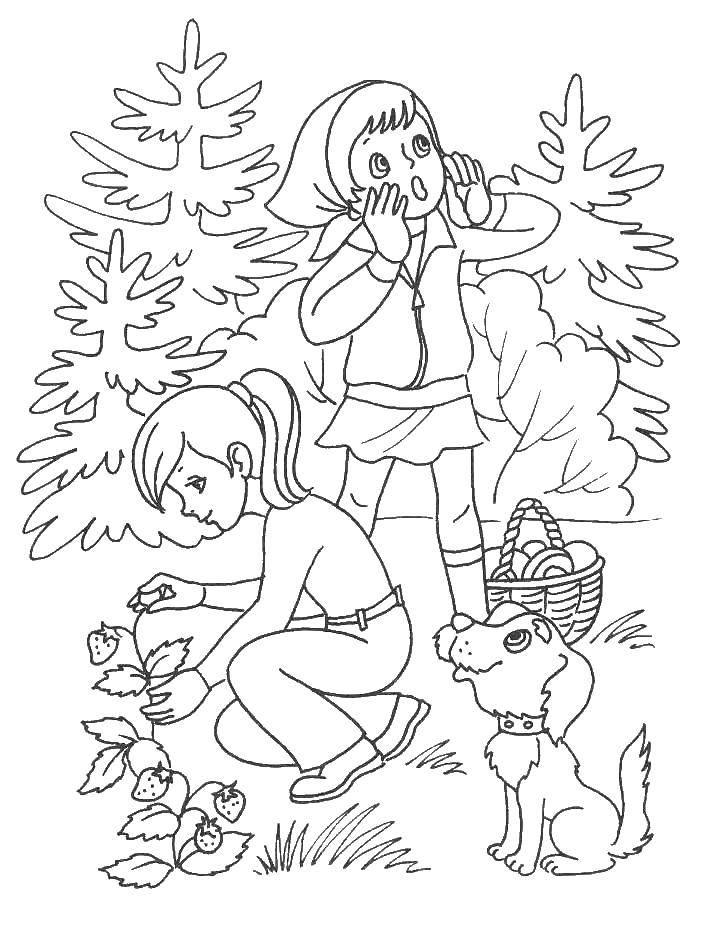 Раскраска Девочки и песик в походе Скачать отдых, природа, поход.  Распечатать ,Отдых на природе,