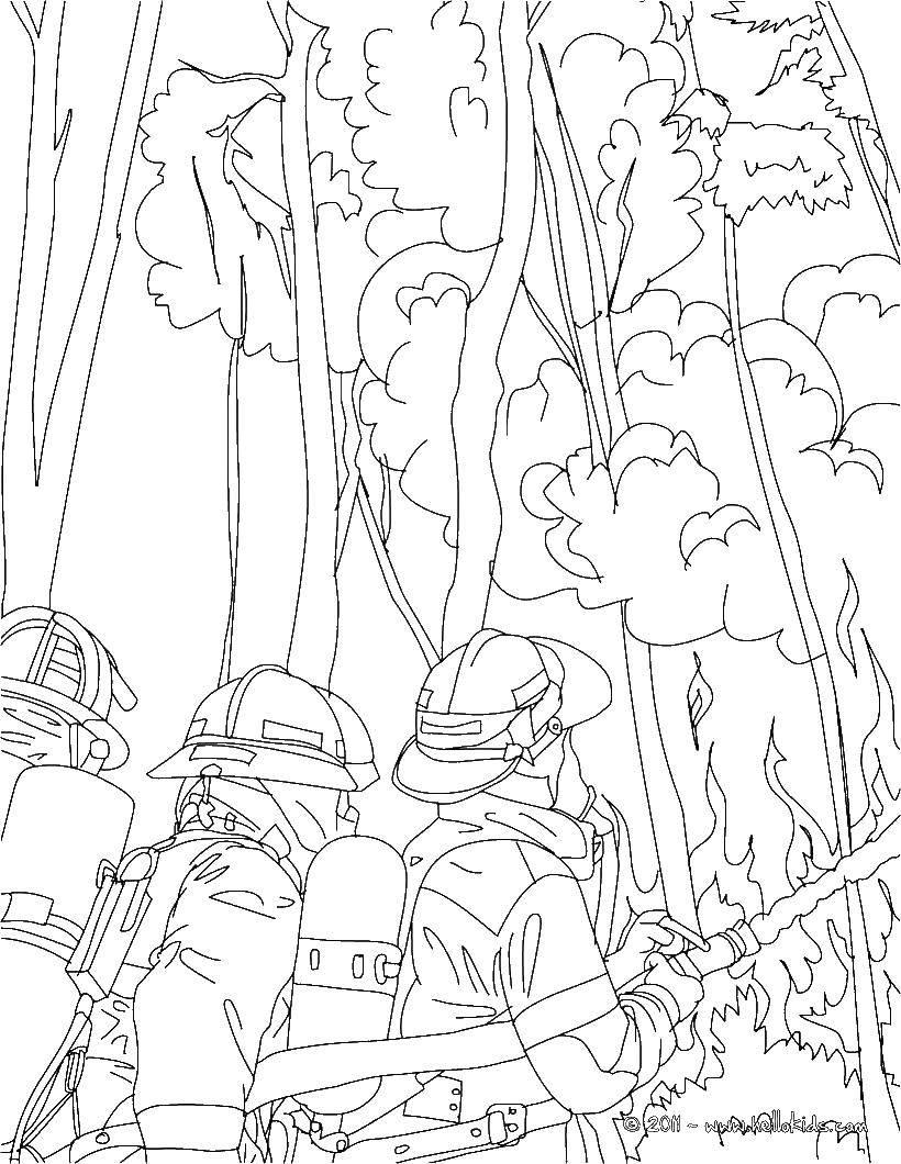 Раскраска Пожар в лесу Скачать огонь, пожар, пожарные.  Распечатать ,Огонь,