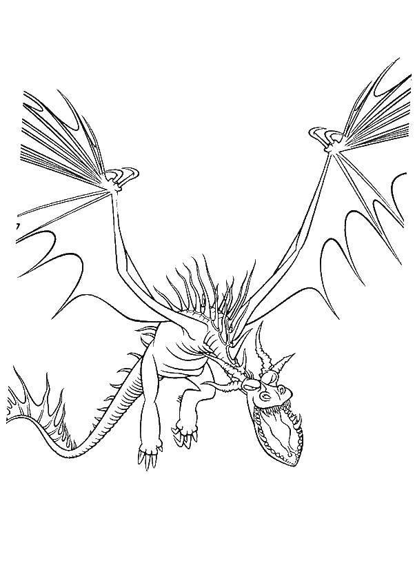 Раскраска Драконы Скачать Персонаж из мультфильма, Winx.  Распечатать ,Винкс,