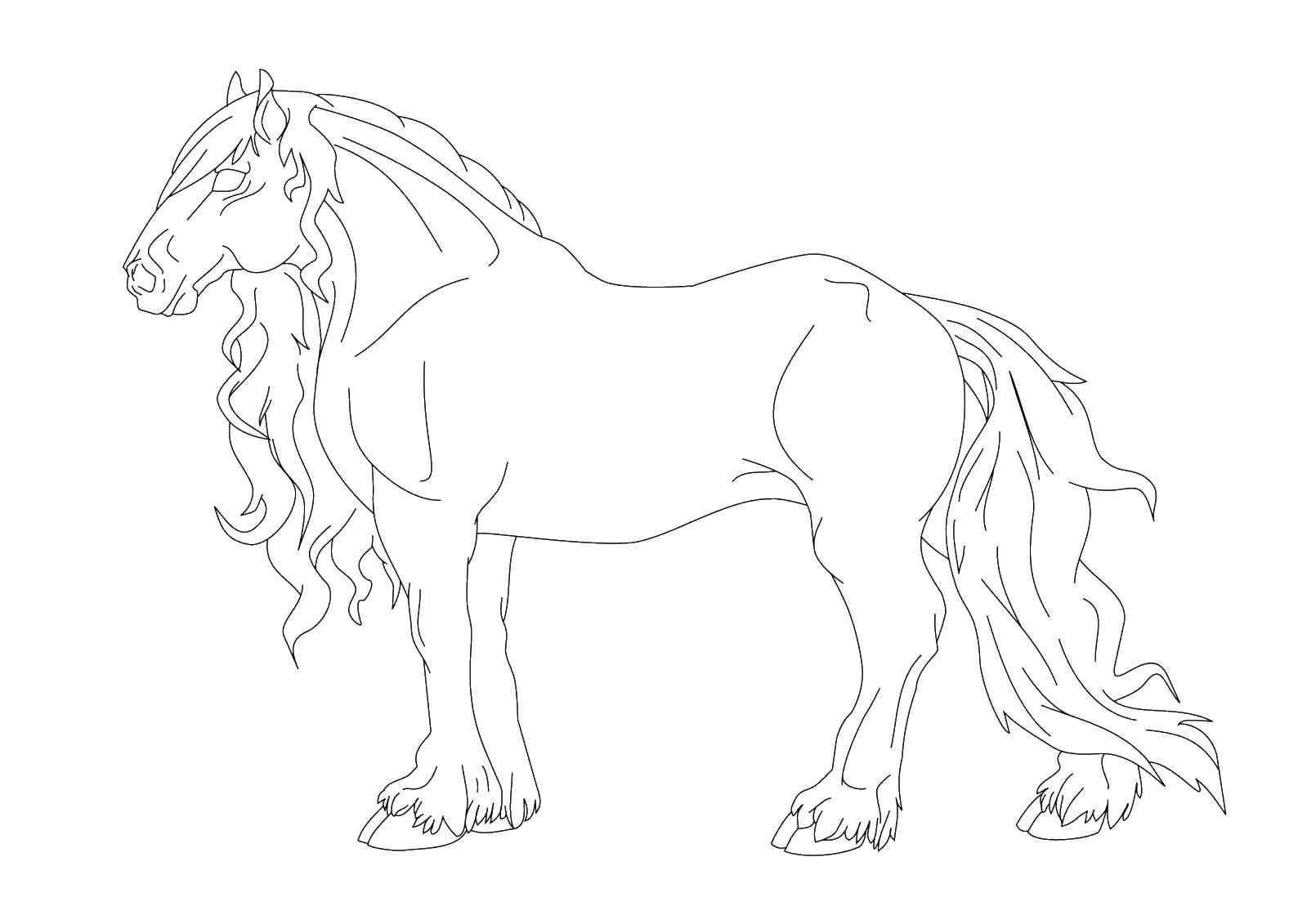 Раскраска лошади Скачать ,воздушный шар,.  Распечатать