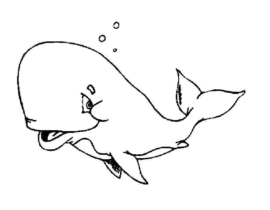 Раскраска кит Скачать Череп, узоры.  Распечатать ,Череп,