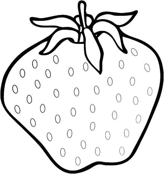 Раскраска ягоды Скачать ,Ягоды, клубника,.  Распечатать