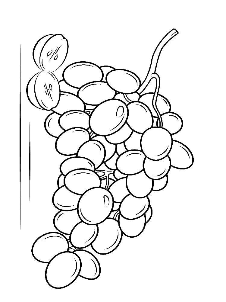 Раскраска виноград Скачать Белоснежка.  Распечатать ,Сказки,