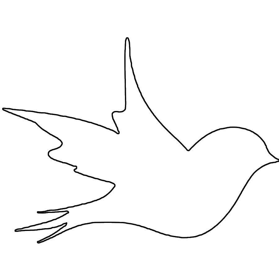 Раскраска Контур ласточки Скачать контур, ласточка.  Распечатать ,Контуры для вырезания птиц,
