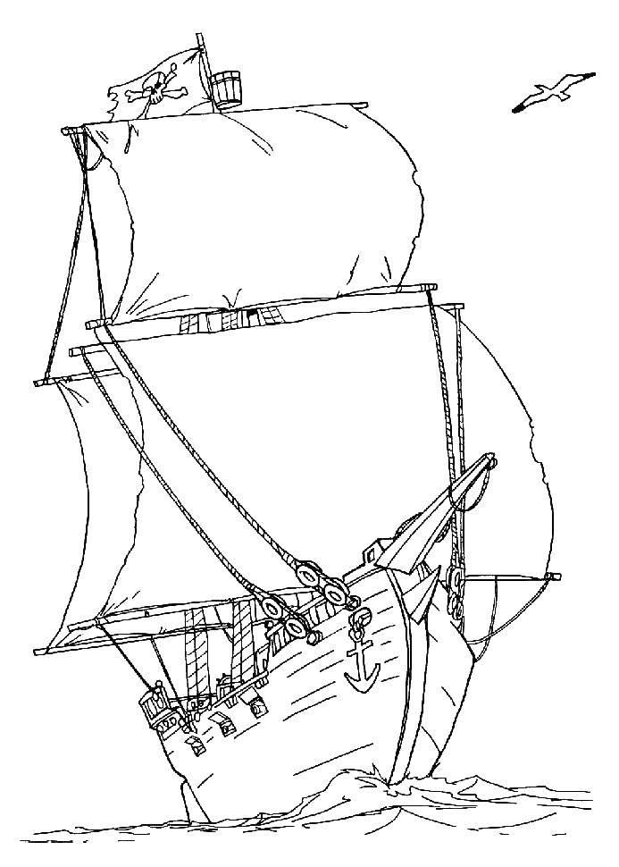 Раскраска корабль Скачать Птицы, петушок.  Распечатать ,как нарисовать поэтапно животных,