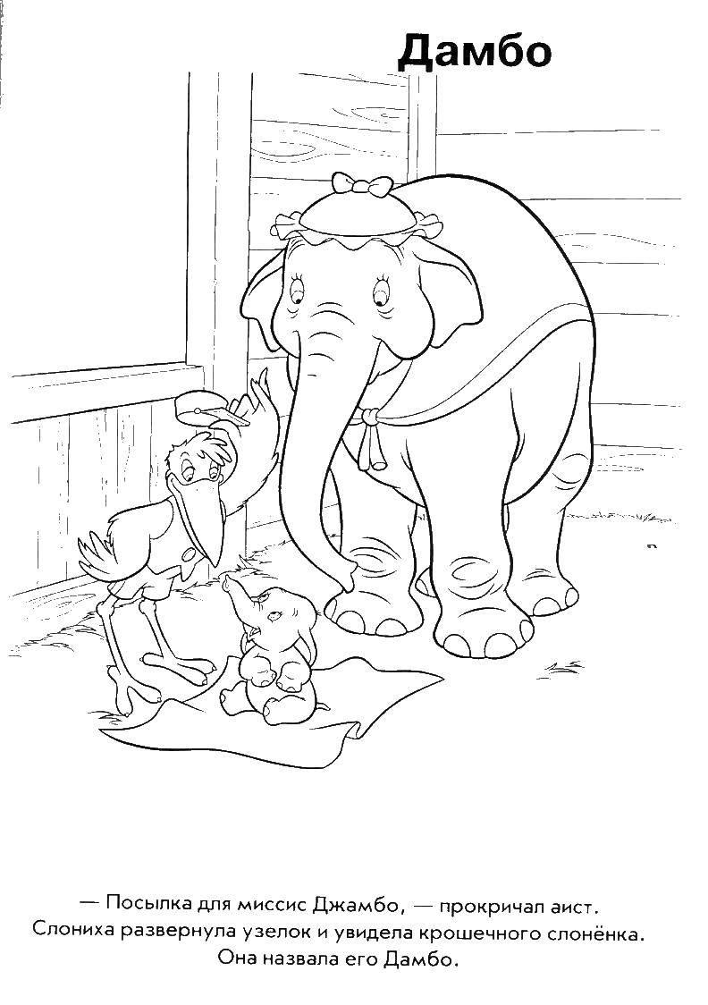 Раскраска Аист принес слоненка Скачать Дамбо, слон.  Распечатать ,дамбо,
