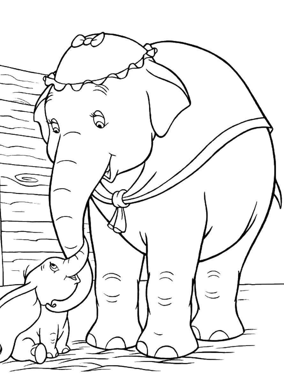 Раскраска Слоненок дамбо Скачать ,Животные, слоненок,.  Распечатать