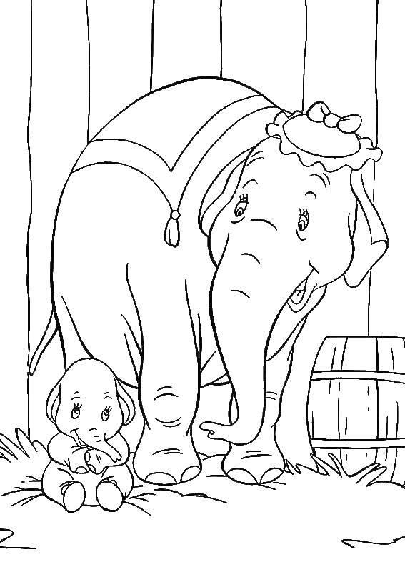 Раскраска Слониха со слоненком дамбо Скачать Слон, Дамбо.  Распечатать ,дамбо,