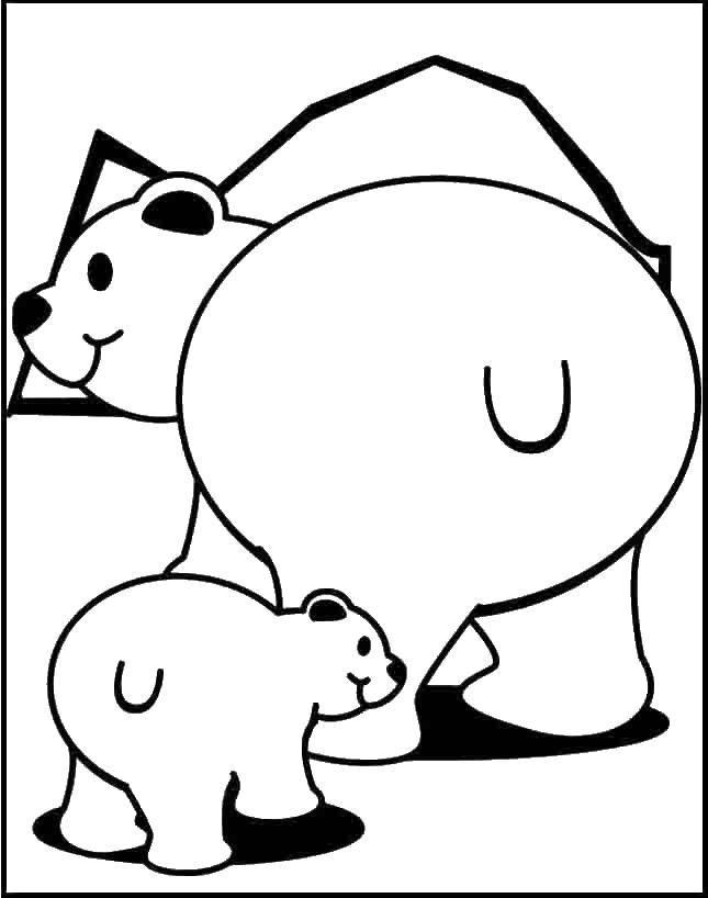Раскраска медвежонок умка Скачать котенок, бабочка, бантик.  Распечатать ,котики,