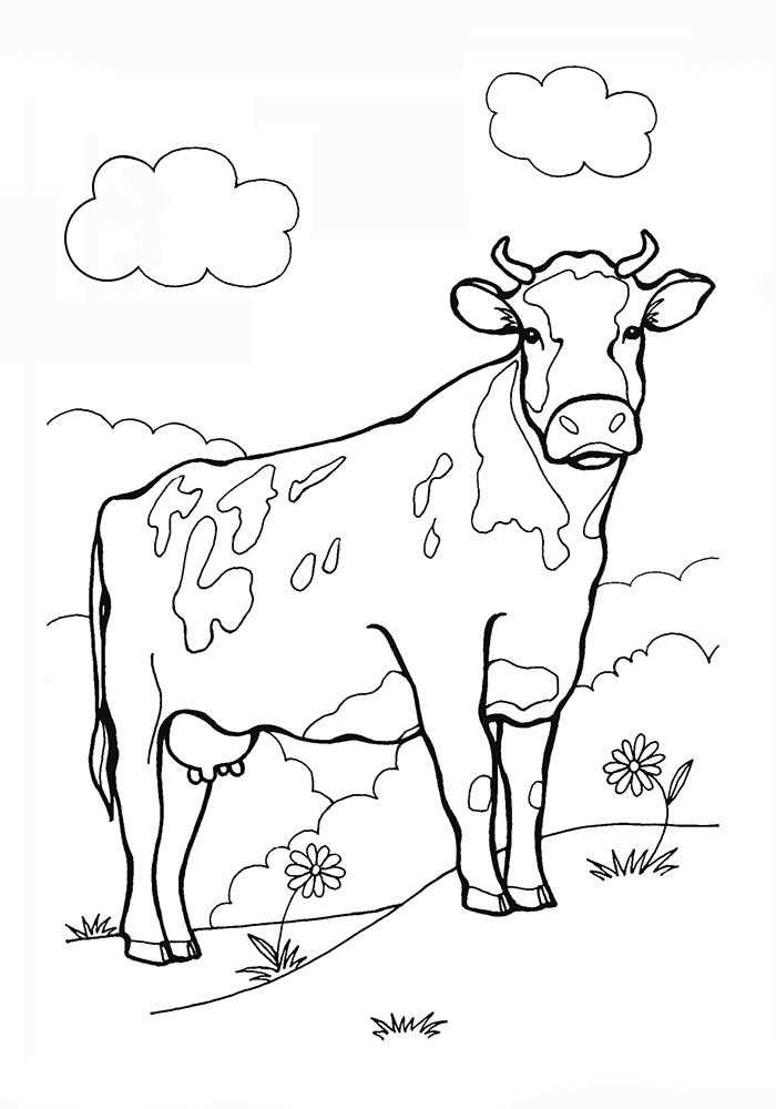 Раскраски корова, Страница:5.