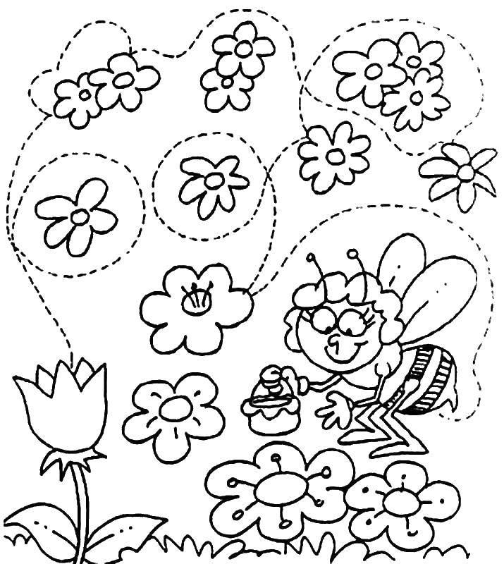 Раскраска Пчелка мая собирает нектар Скачать ,пчелка мая, цветы, нектар,.  Распечатать