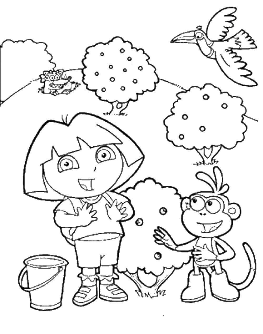 Раскраска Даша собирает ягоды с башмачком Скачать даша, путешественница, башмачок.  Распечатать ,Дора,