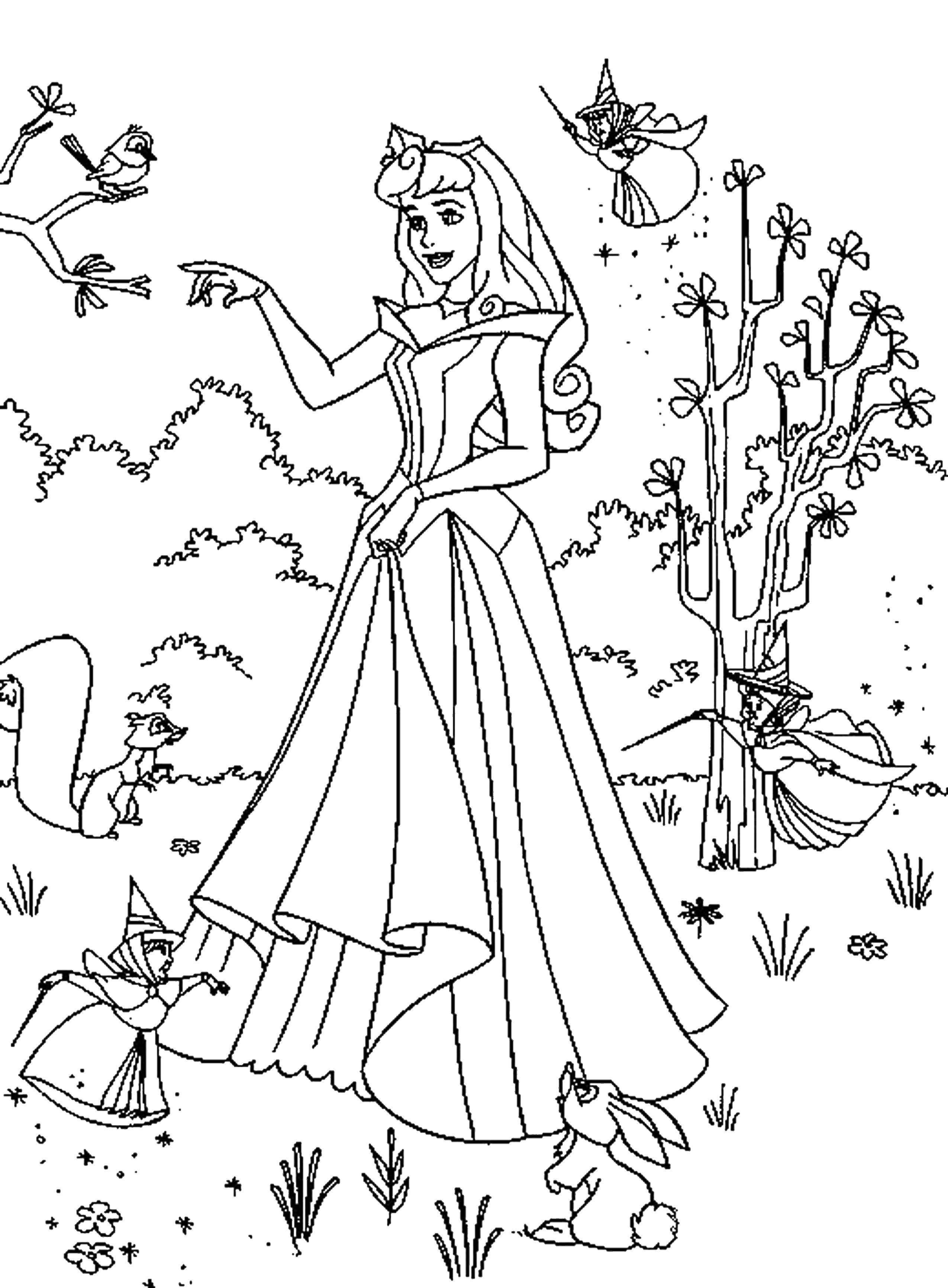 Раскраска Принцесса аврора с феями Скачать спящая красавица, принцесса Аврора.  Распечатать ,спящая красавица,