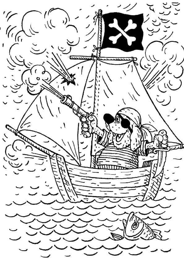 Раскраска Собака пират Скачать пираты, корабль.  Распечатать ,остров сокровищ,