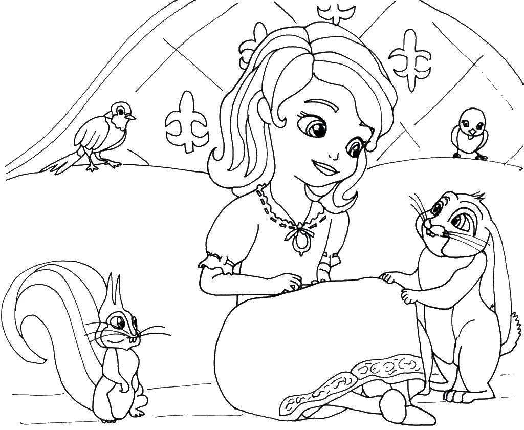 Раскраска Принцесса софия Скачать принцесса софия.  Распечатать ,принцесса софия,