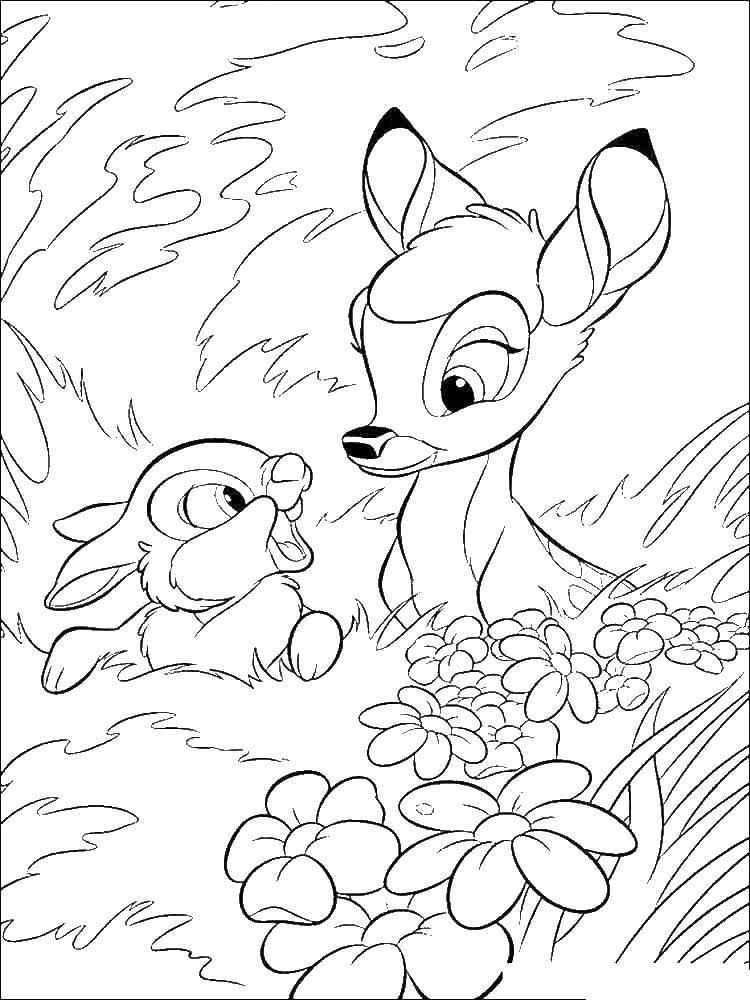 Раскраска Бэмби и топотун зайчик Скачать бэмби, топотун зайчик.  Распечатать ,бэмби,