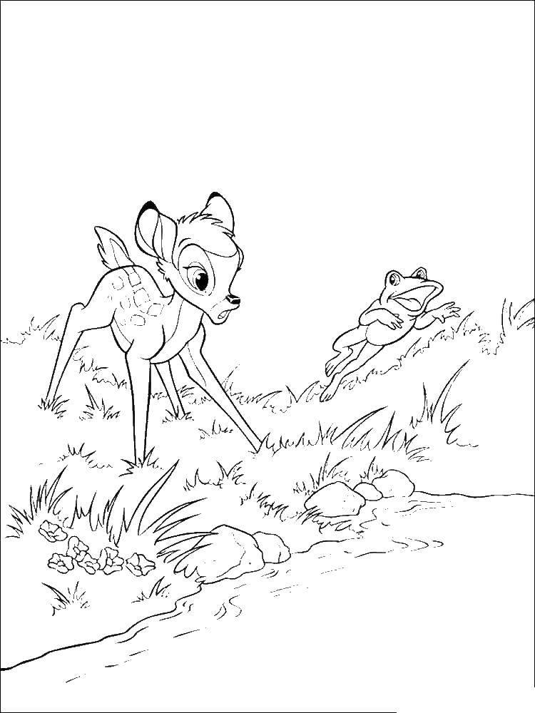 Раскраска Бэмби увидил лягушку Скачать бэмби, зайчик, зайчик.  Распечатать ,бэмби,