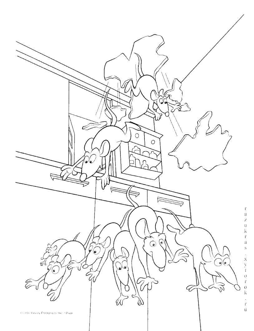 Раскраска Рататуй Скачать Рататуй, мультфильм, мышки.  Распечатать ,рататуй,