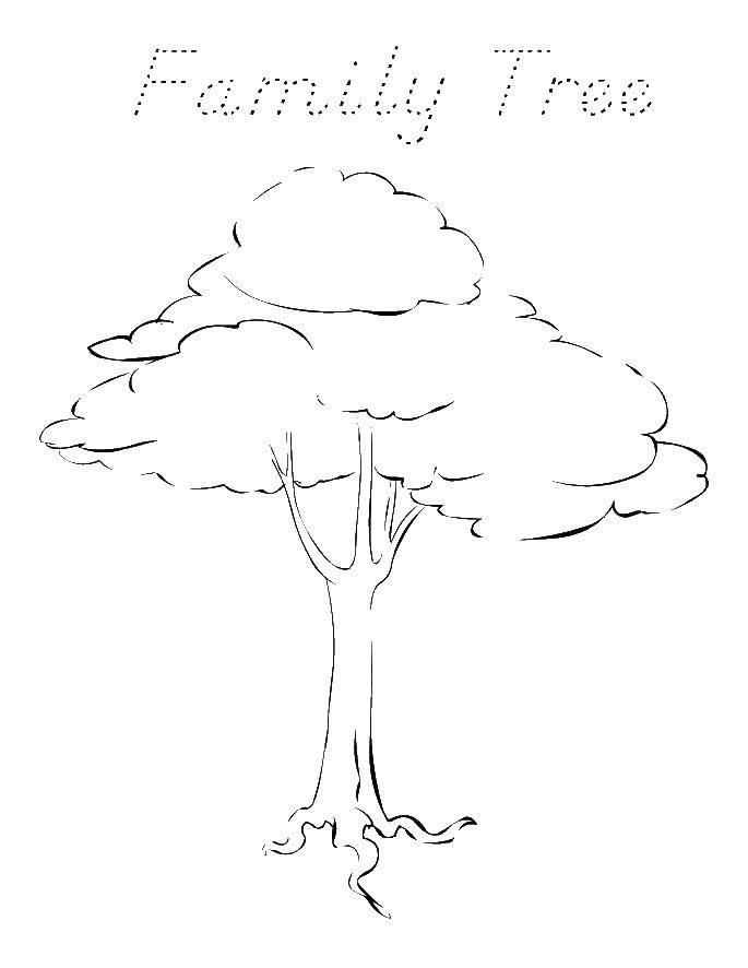 Раскраска Семейное древо Скачать Семья, родители, дети.  Распечатать ,Семейное дерево,