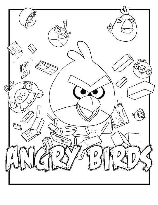 Раскраска angry birds Скачать русалка, хвост, бусы.  Распечатать ,раскраски,
