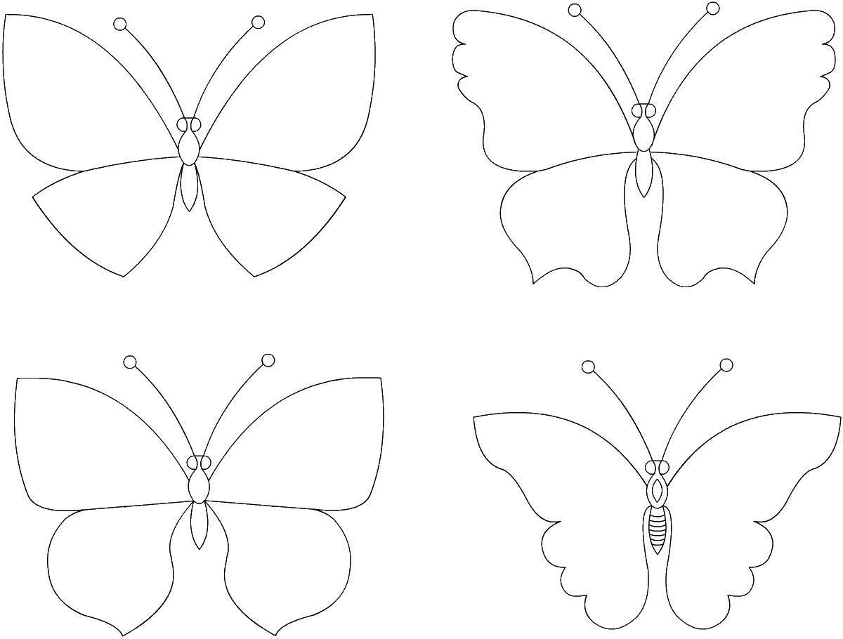 Раскраска бабочки Скачать майнкрафт, персонажи.  Распечатать ,майнкрафт,